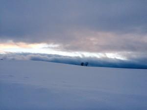 美瑛の丘 絶景