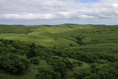 猿払 宗谷丘陵